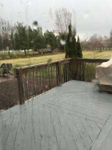 Rain Fall in Springtime